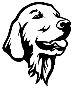 Golden Retriever Bust Decal